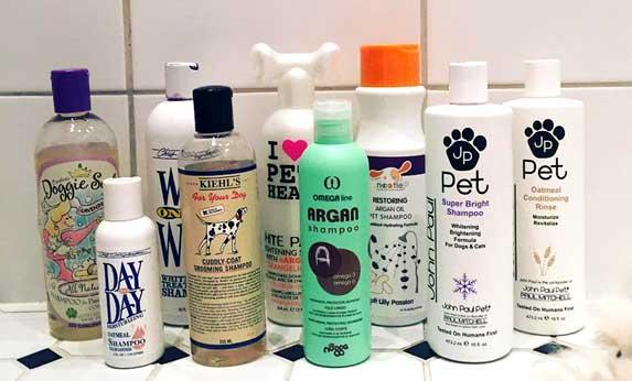Best Dog Shampoo For Irritated Skin