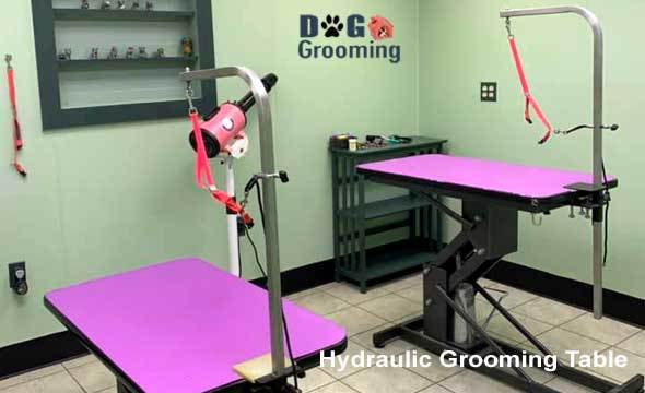 Best Hydraulic Grooming Table For Dogs
