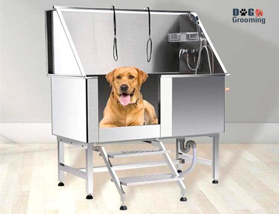 Best Stainless Steel Tubs for Dogs